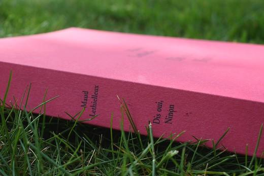 Dis oui, Ninon, le premier roman de Maud Lethielleux