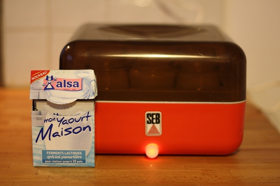 ferment lactique pour yaourt maison alsa