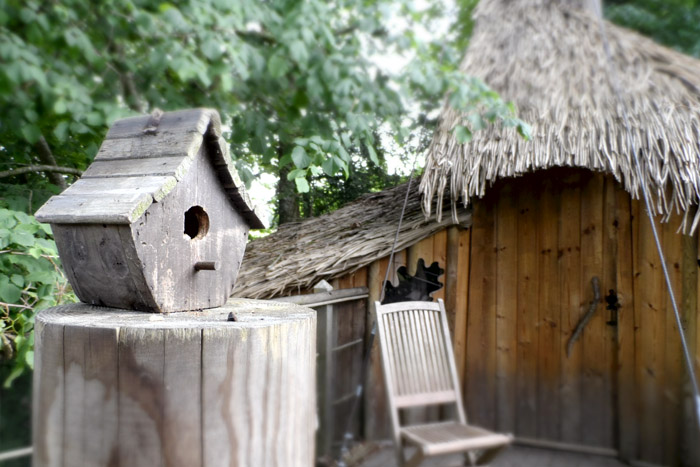 ma nuit dans les arbres avec bonobo au domaine des ormes. Black Bedroom Furniture Sets. Home Design Ideas
