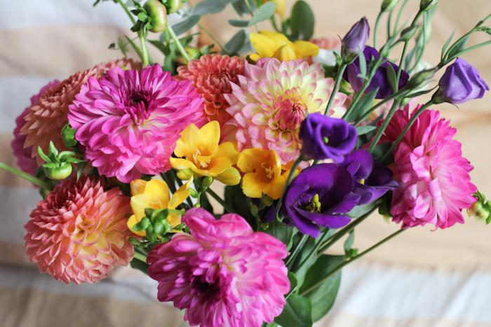 fleurspreferees16