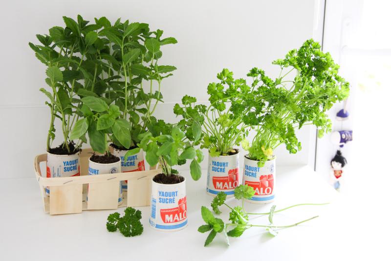 DIY 100% récup – petit jardin aromatique d\'intérieur | Merci pour le ...
