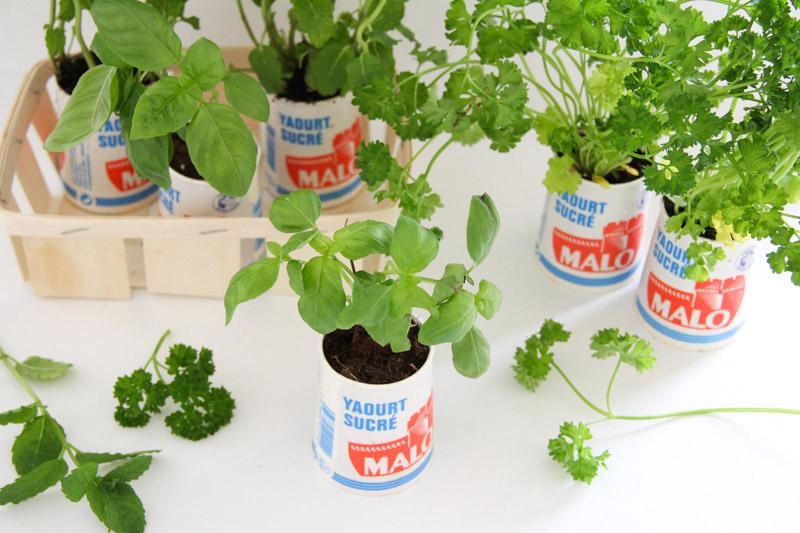 Diy 100 Recup Petit Jardin Aromatique D Interieur Merci