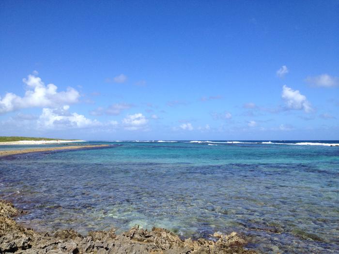 Guadeloupe - Grande Terre - Pointe des Châteaux