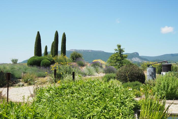Jardin botanique Sanoflore Gigors