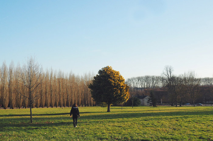 parc du Château de Versailles (via mercipourlechocolat.fr)