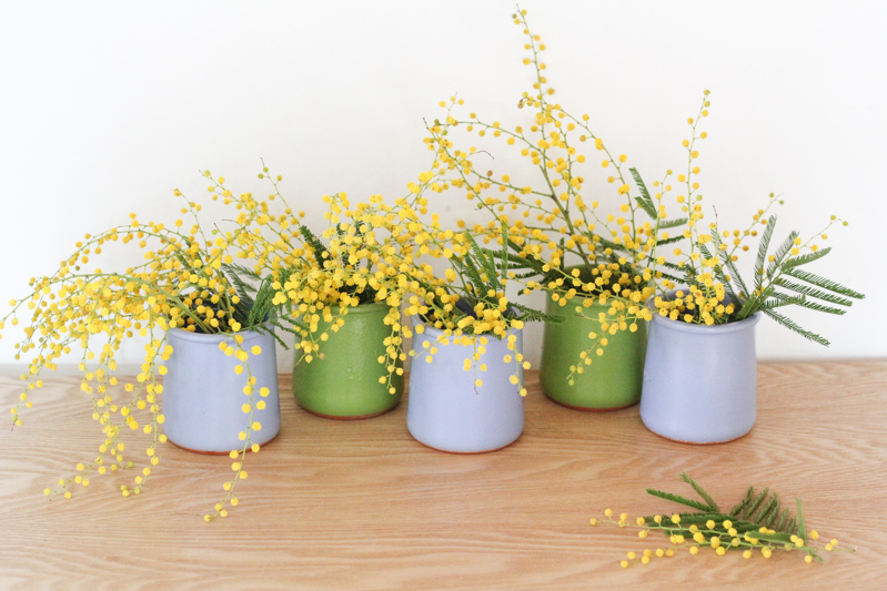 petits bouquets de mimosa (via wonderfulbreizh.fr)