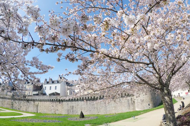 Remparts de Vannes au Printemps (via mercipourlechocolat.fr)