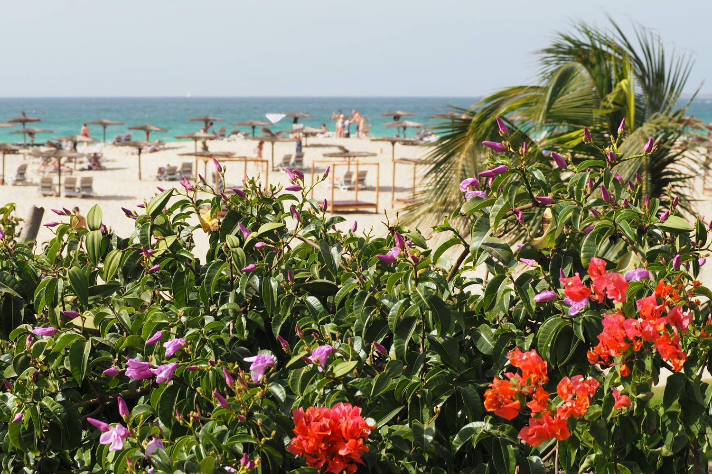 Royal Boa Vista Jet Tours Cap Vert