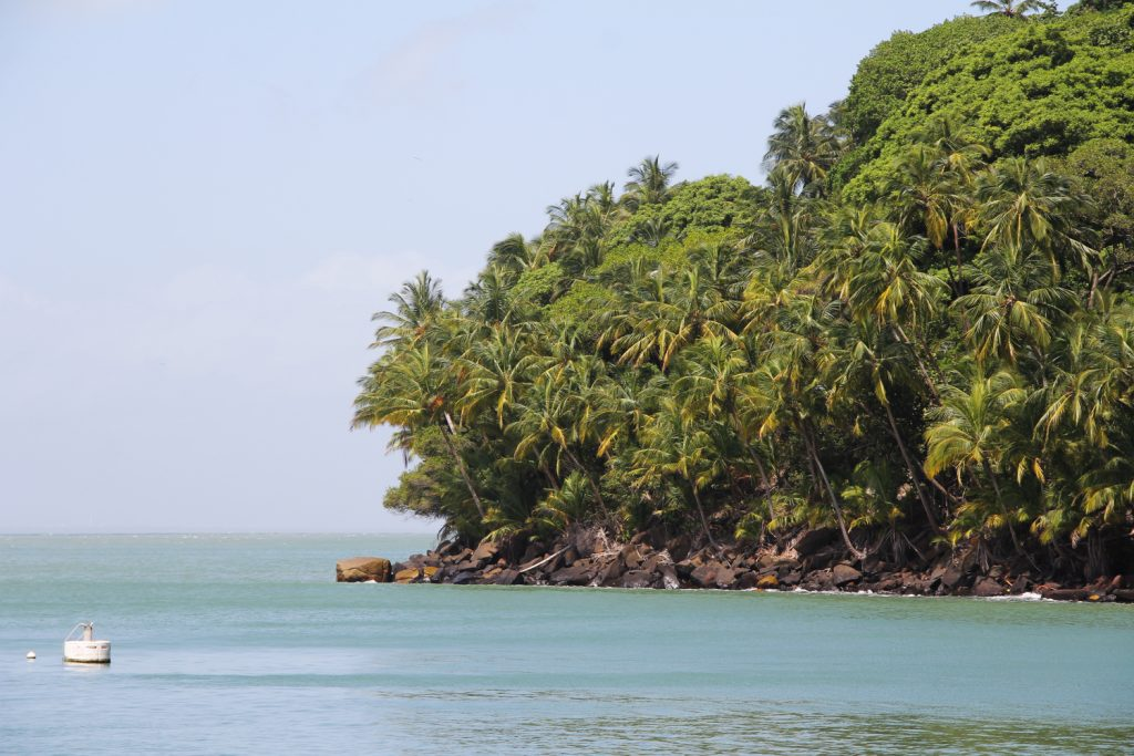 GUYANE - île du Salut