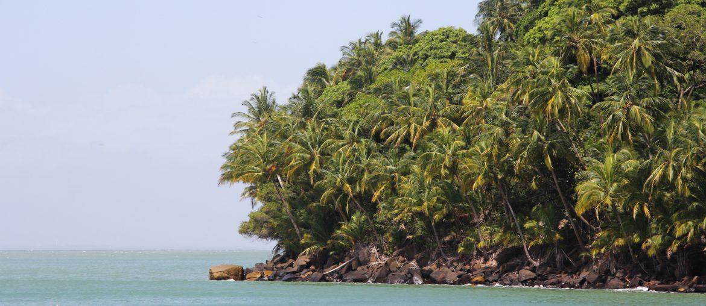 À la découverte de la Guyane – la forêt amazonienne, les îles du Salut & Kourou