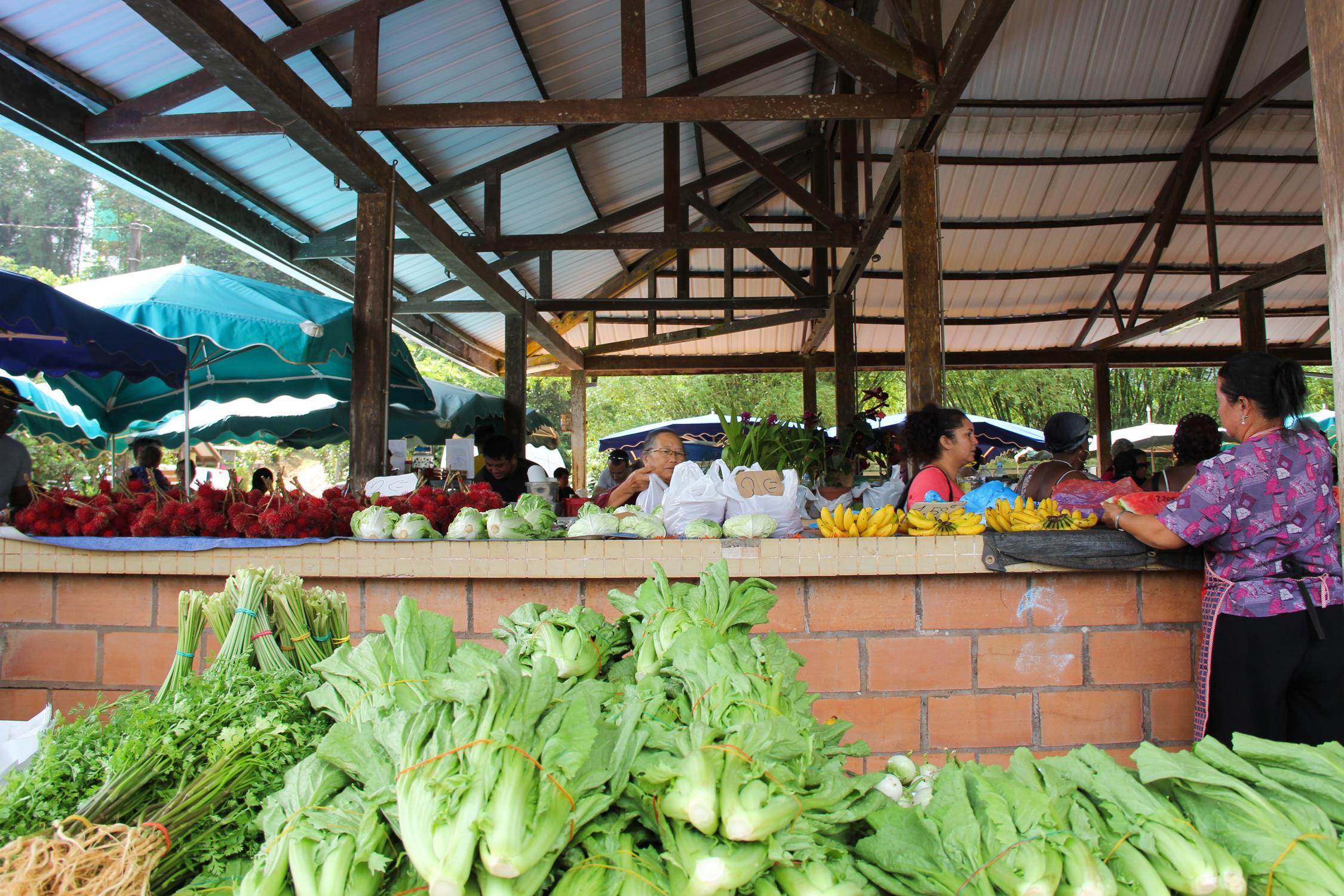 GUYANE - marché Hmong de Cacao