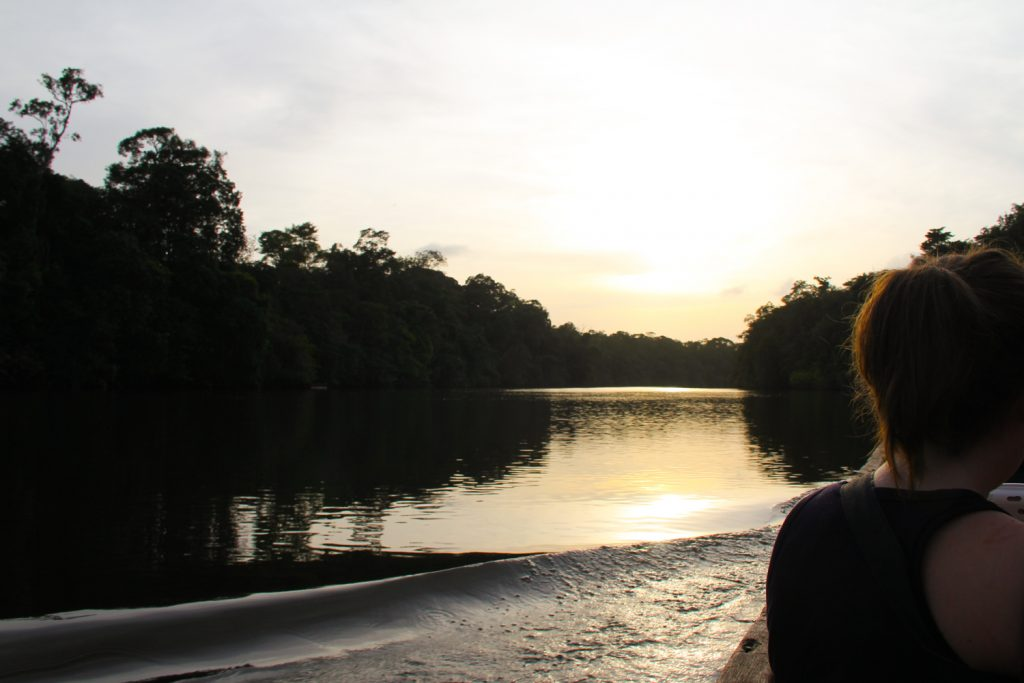 GUYANE - WAPA LODGE