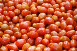 SAVEOL - tomates