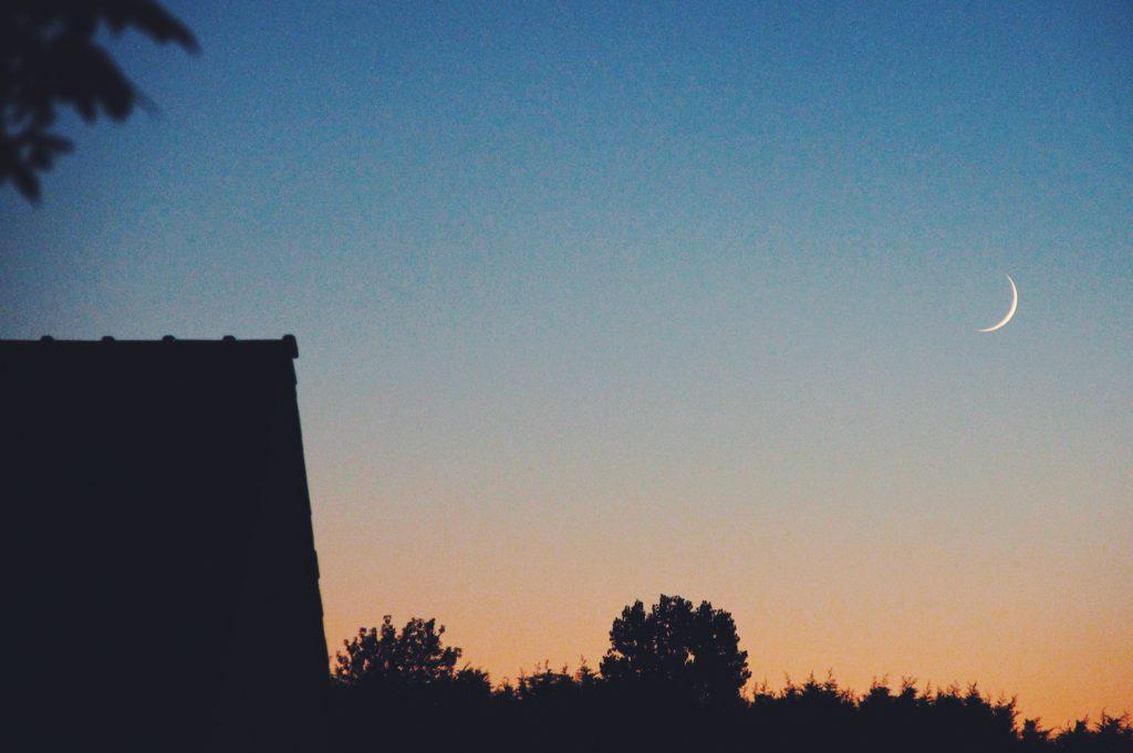 sixteensixteen  backdrops