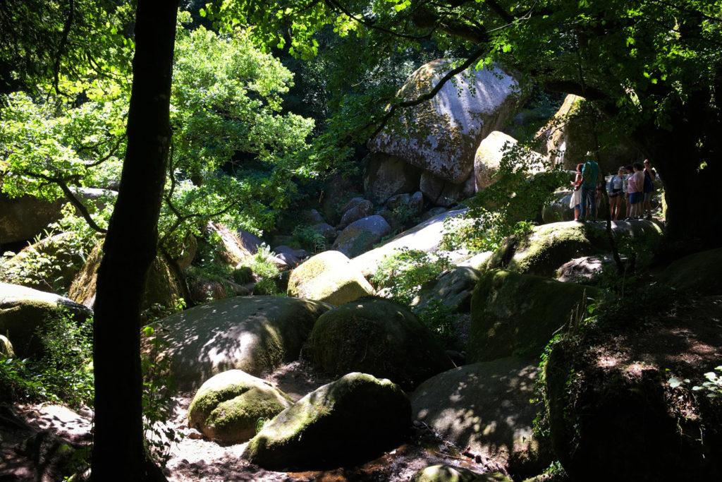LA VÉLODYSSÉE - forêt de HUELGOAT (via mercipourlechocolat.fr)
